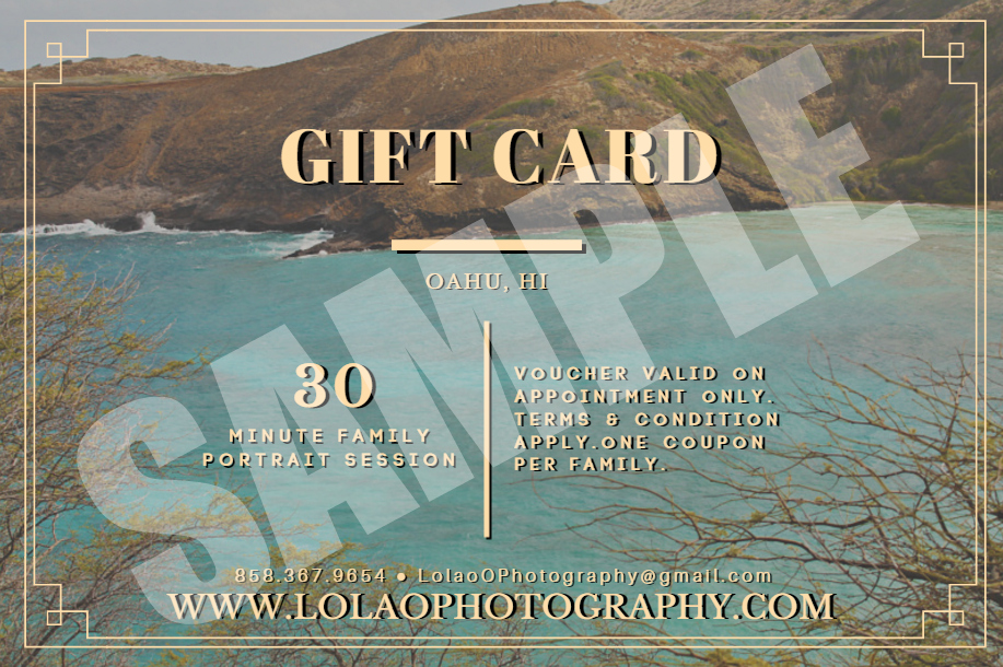 Gift Certificate 30 Minute Family Photo Session FRONT SAMPLE watermarked